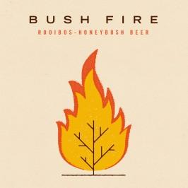 wo54-bushfire-front-1200x1200-1024x1024